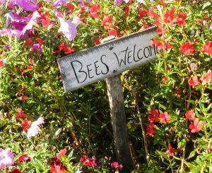 Bees Welcome